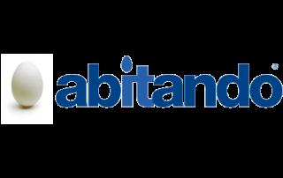 Badini Creative Studio - marchio brand logo - Abitando
