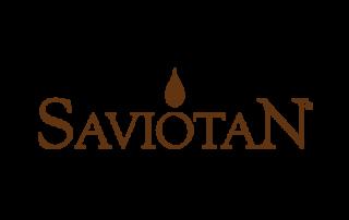 Badini Creative Studio - marchio brand logo - SaviotaN