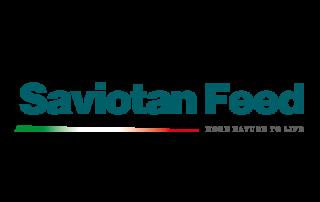 Badini Creative Studio - marchio brand logo - SaviotanFeed