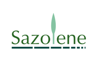 Badini Creative Studio - marchio brand logo - sazolene